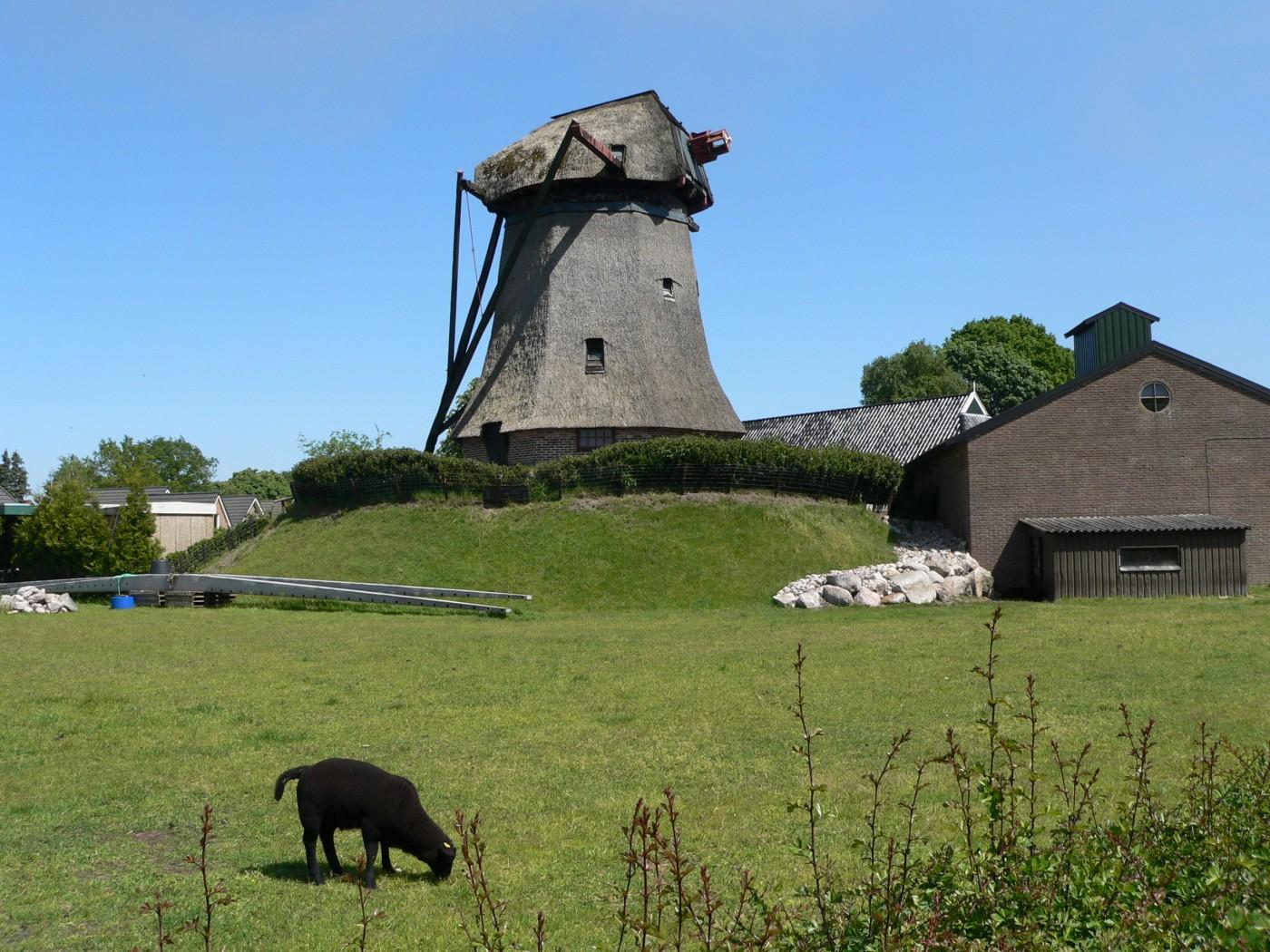 Zuidwolde molen Wassens