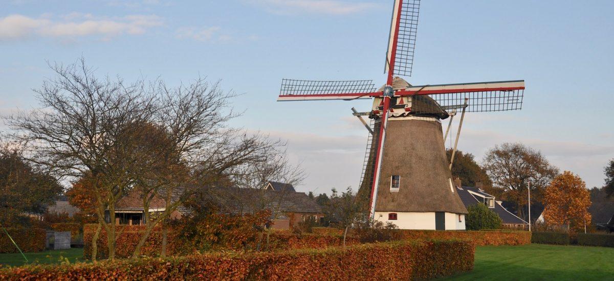 Albertdina Noord Sleen herfst