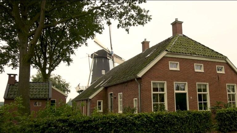 De Mulderij en op de achtergrond de molen (foto: RTV Drenthe)